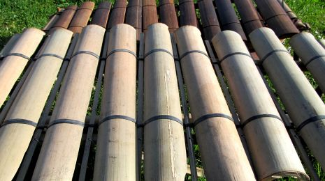 bambusofon